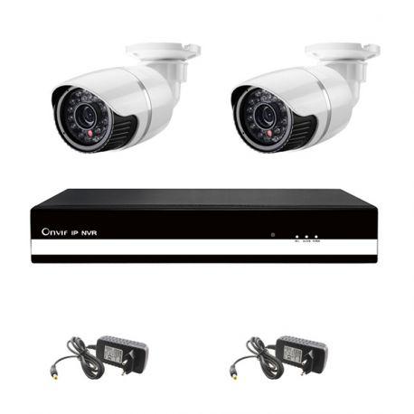 2 udendørs HD IP kamera, 4 kanals NVR
